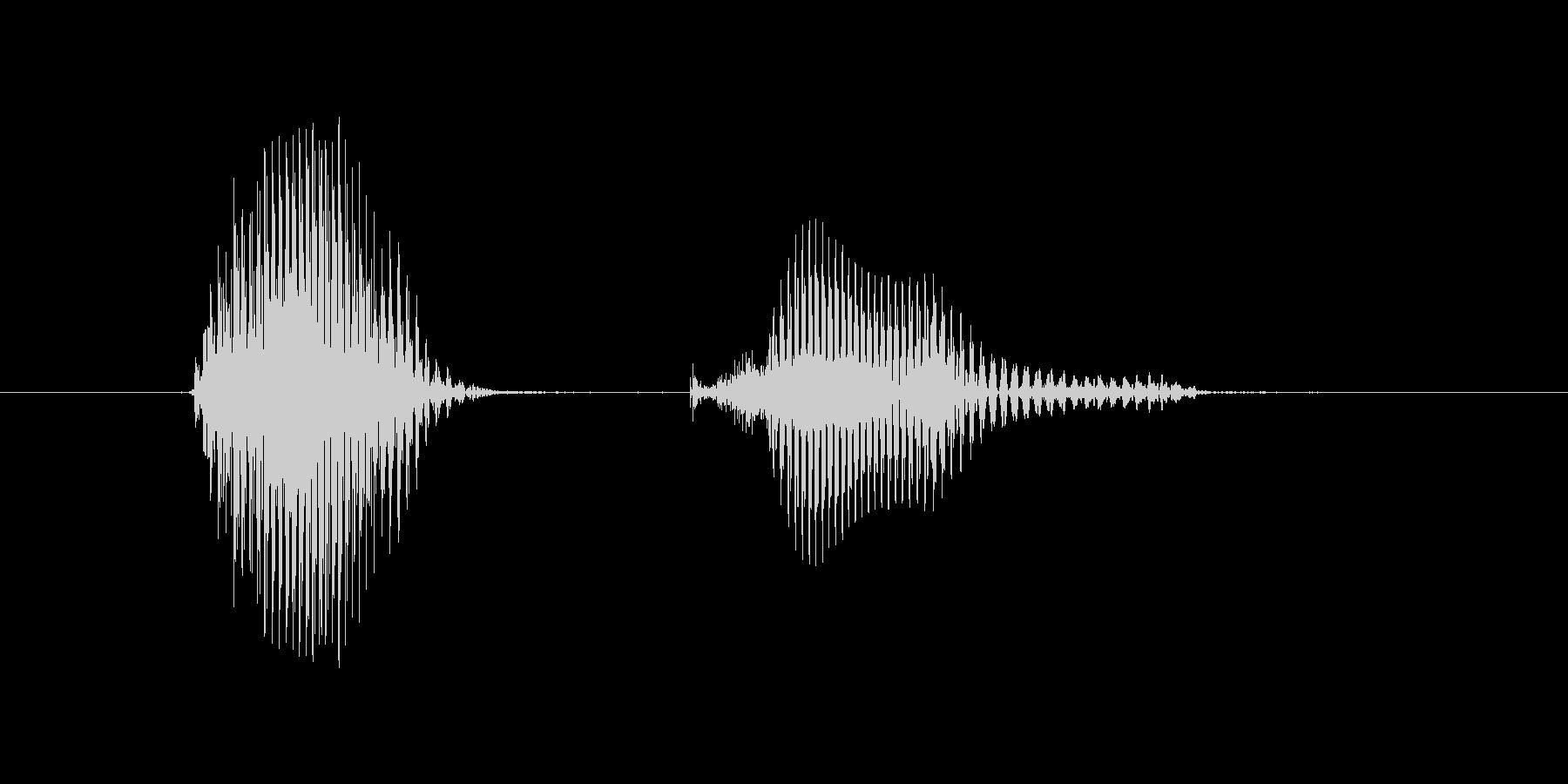 第九問(だいきゅうもん)の未再生の波形