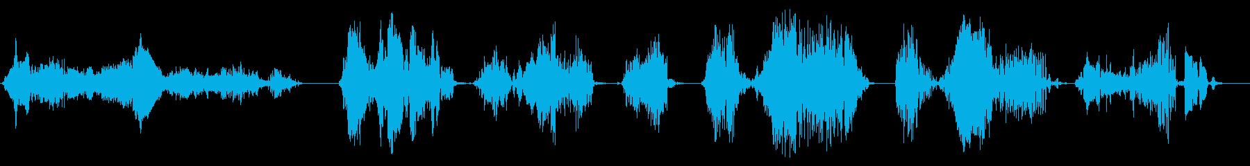 生き物の鳴き声、コメディ生き物のふ...の再生済みの波形