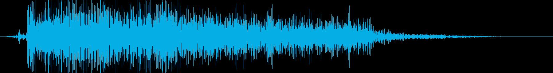 ビシュッの再生済みの波形