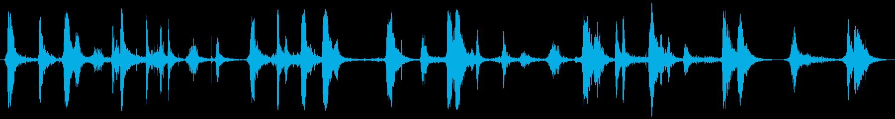 弾丸ホイップバイ、ショート、フォリーの再生済みの波形