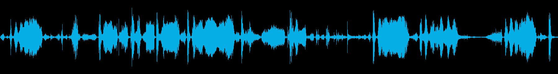 ハイエナ喘息のうなり声の再生済みの波形