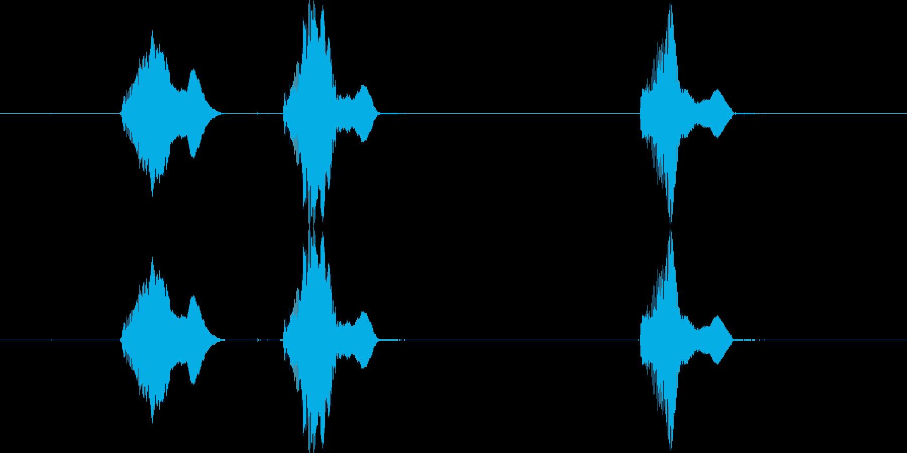 【動物】子犬の鳴き声「わんわん! or…の再生済みの波形