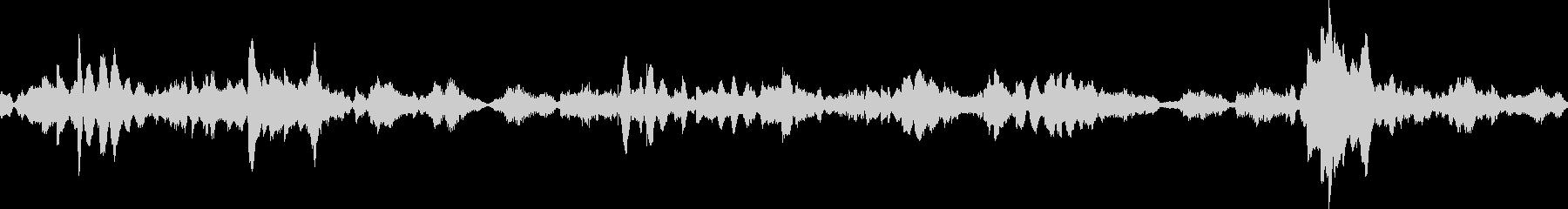 エスニックMS20 1003 ZGの未再生の波形
