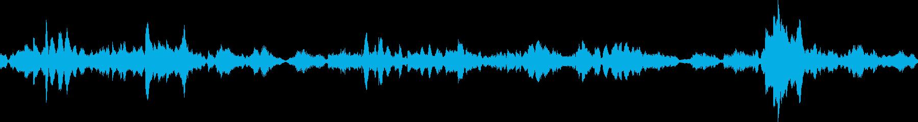 エスニックMS20 1003 ZGの再生済みの波形