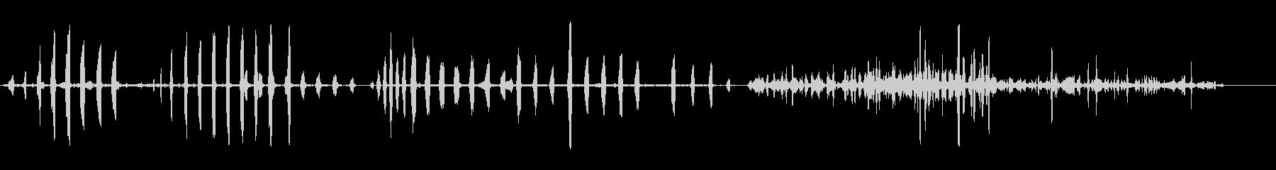 本物のアヒルの未再生の波形