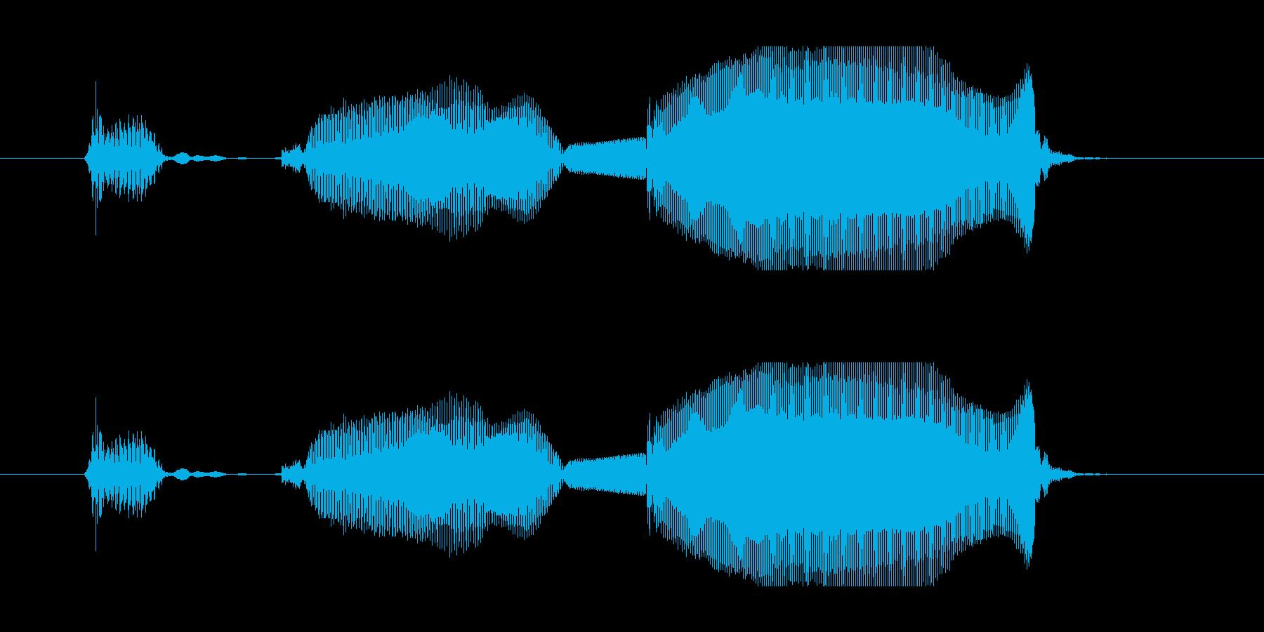6 (子供)あけおめ!!(やさしい)の再生済みの波形