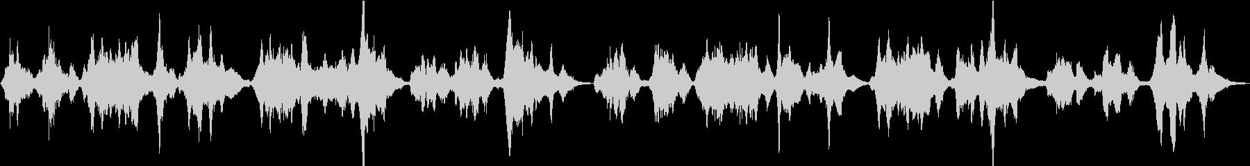 二胡が歌う日本の春「さくらさくら」の未再生の波形