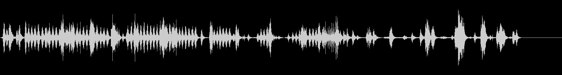動物園-内部-loros 1の未再生の波形