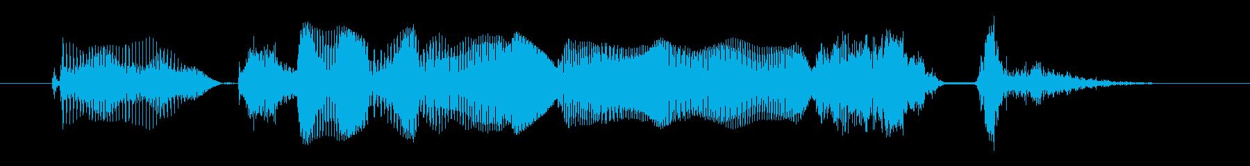 アダルトフィメールG:頑張りますの再生済みの波形
