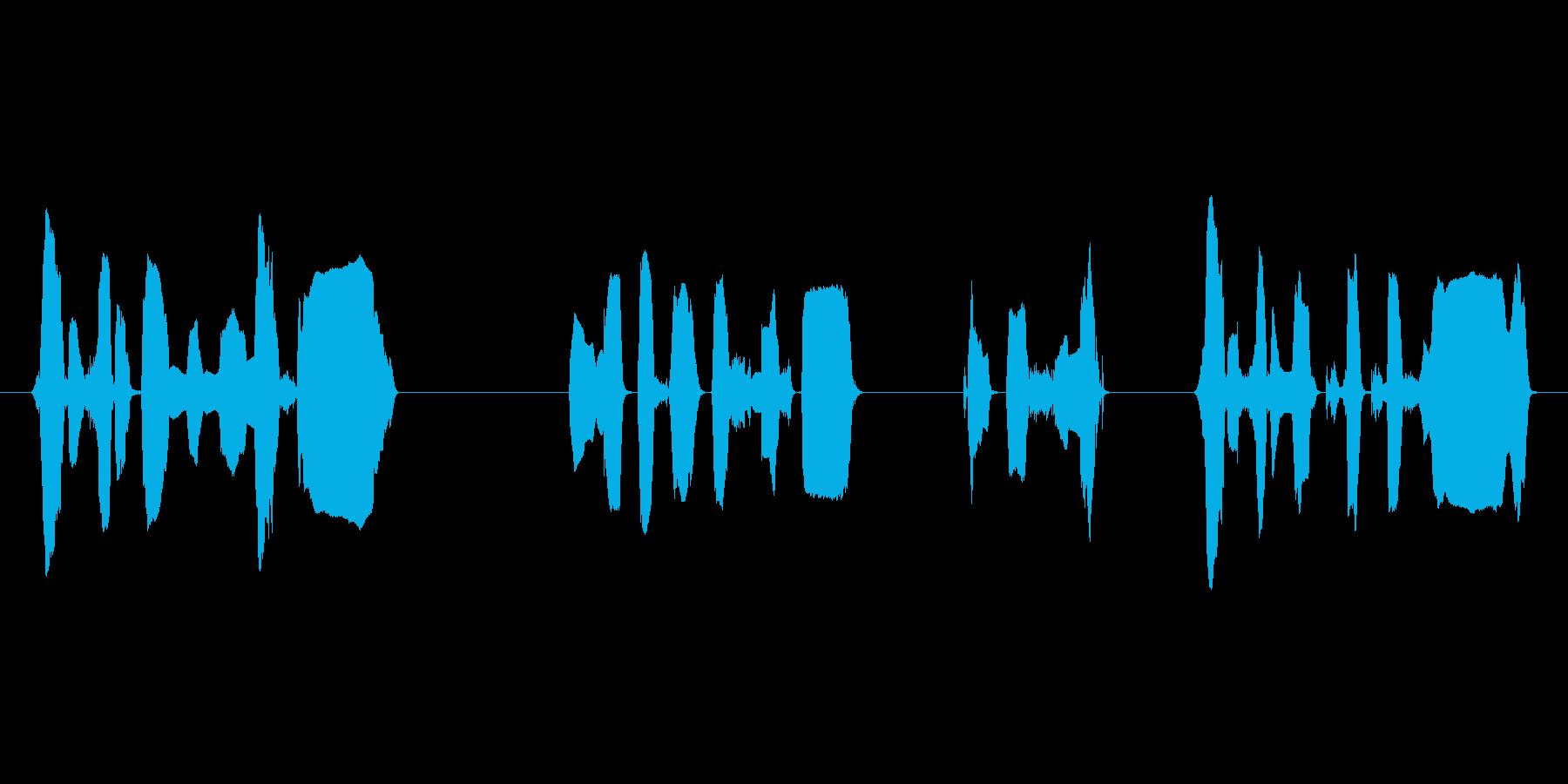 ハロハロ風の店内告知アナウンスですの再生済みの波形