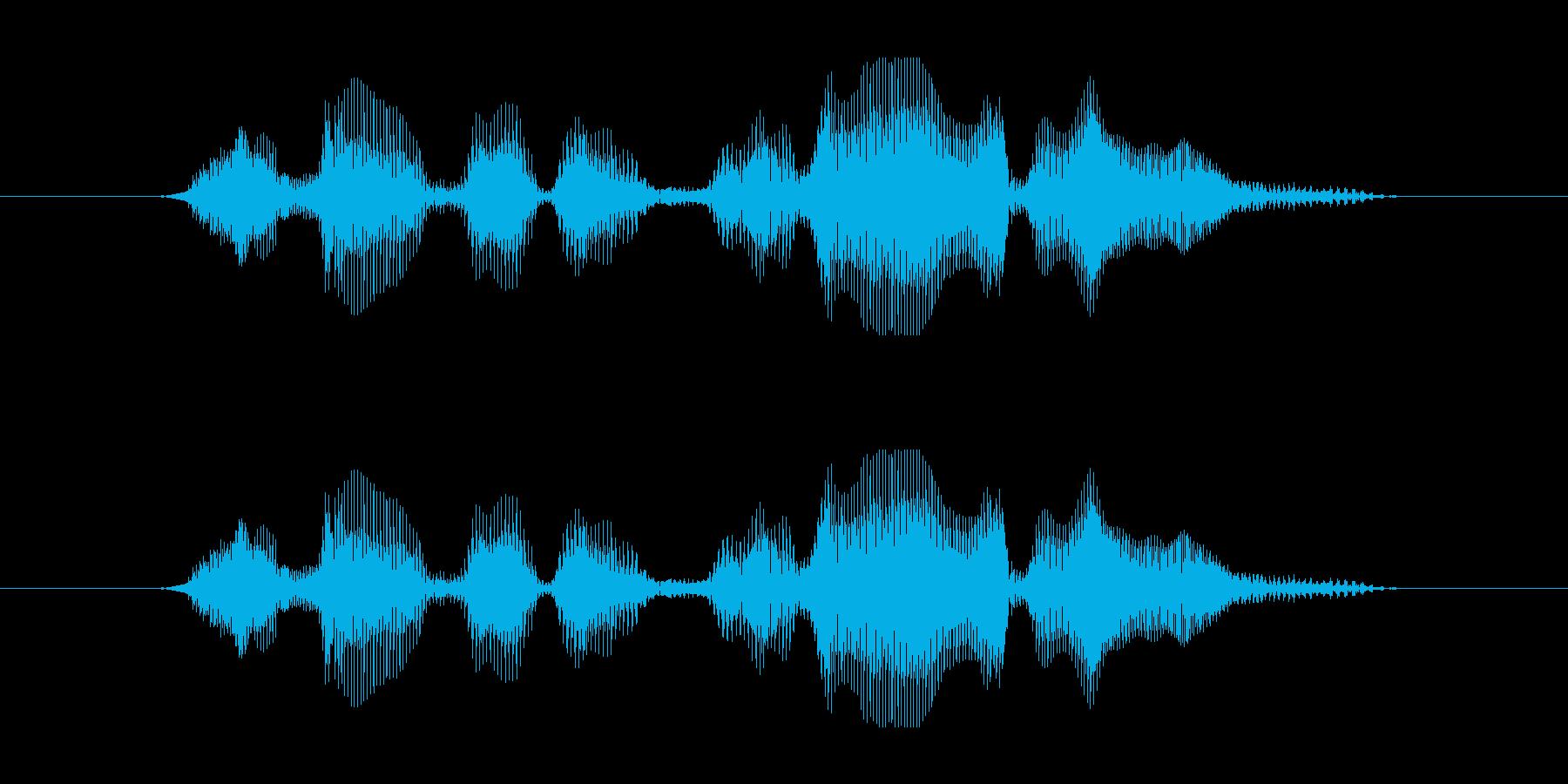 8 今なら貰える DJ風の再生済みの波形