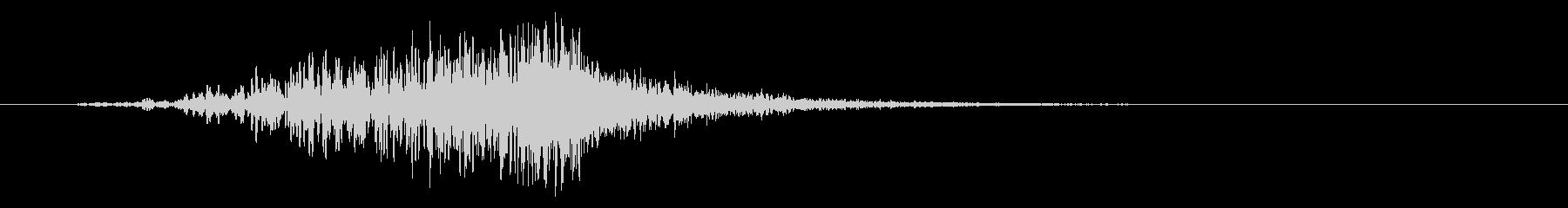 ミディアム、ホロウフーシュの未再生の波形