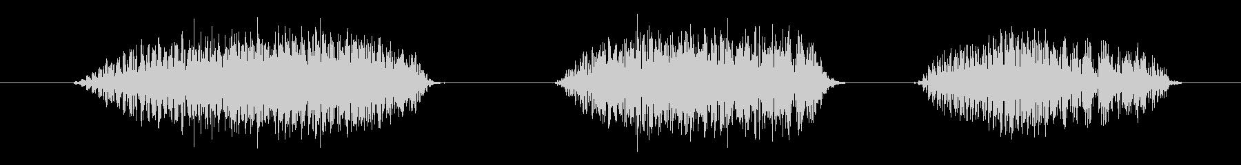 鳥 バードレイヴン01の未再生の波形