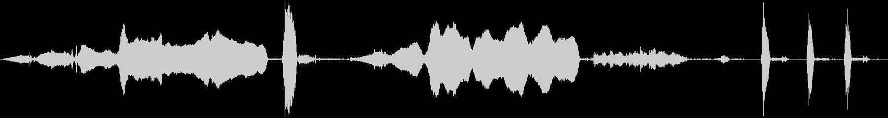 シャチのシャチ:水中:ブローホール...の未再生の波形