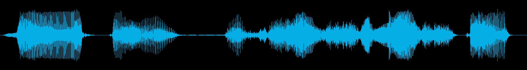データを保存しましたの再生済みの波形