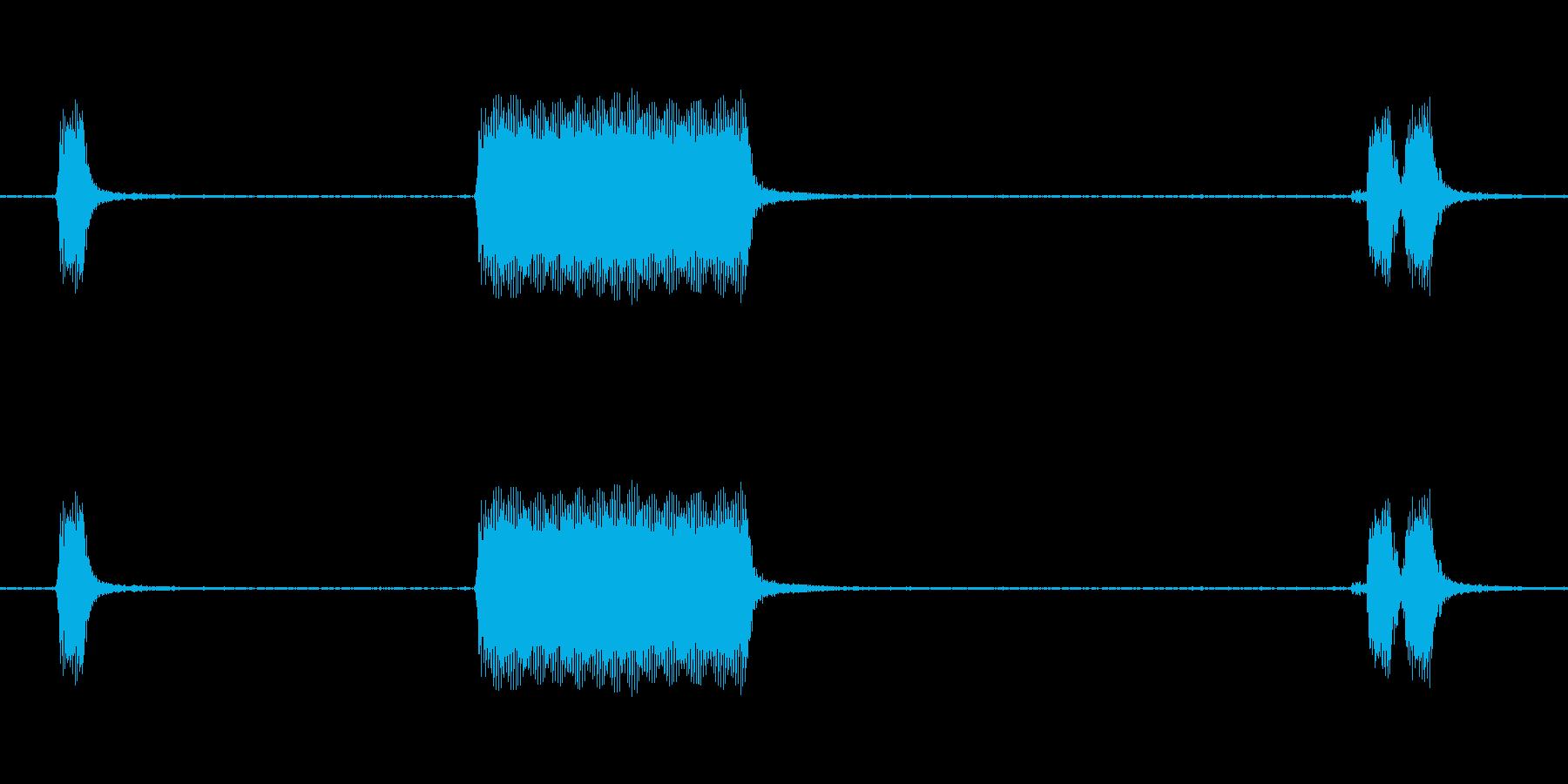 トラックシェブホーンホーン外観の再生済みの波形