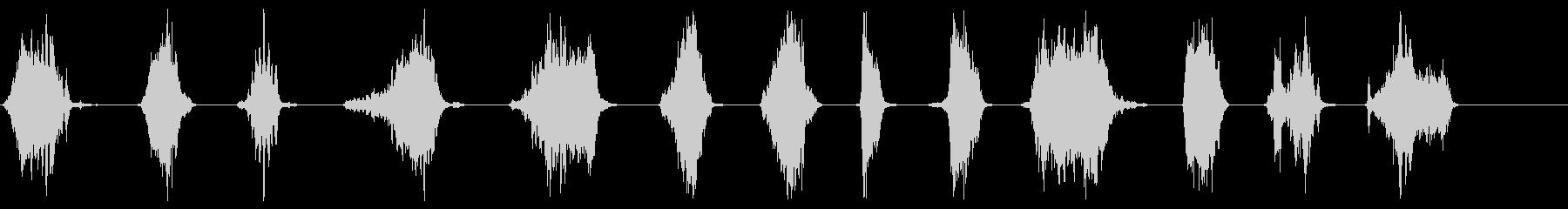 馬-いびきをかくの未再生の波形