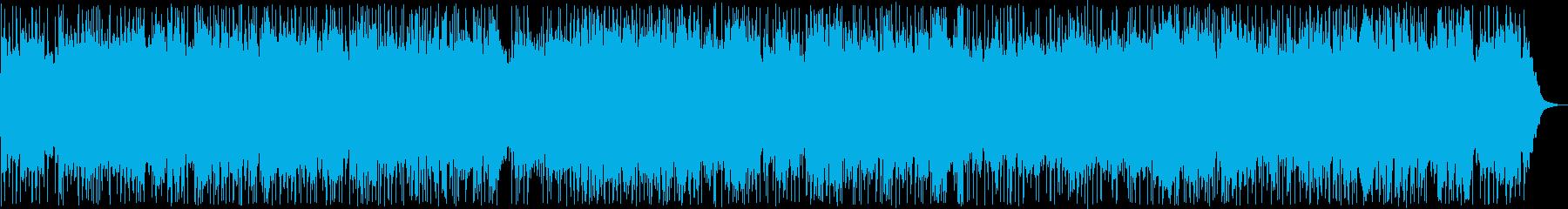 Nineteen spring / Okinawan folk song's reproduced waveform
