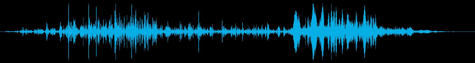 フライング ドラゴン ゲーム 考え中の再生済みの波形