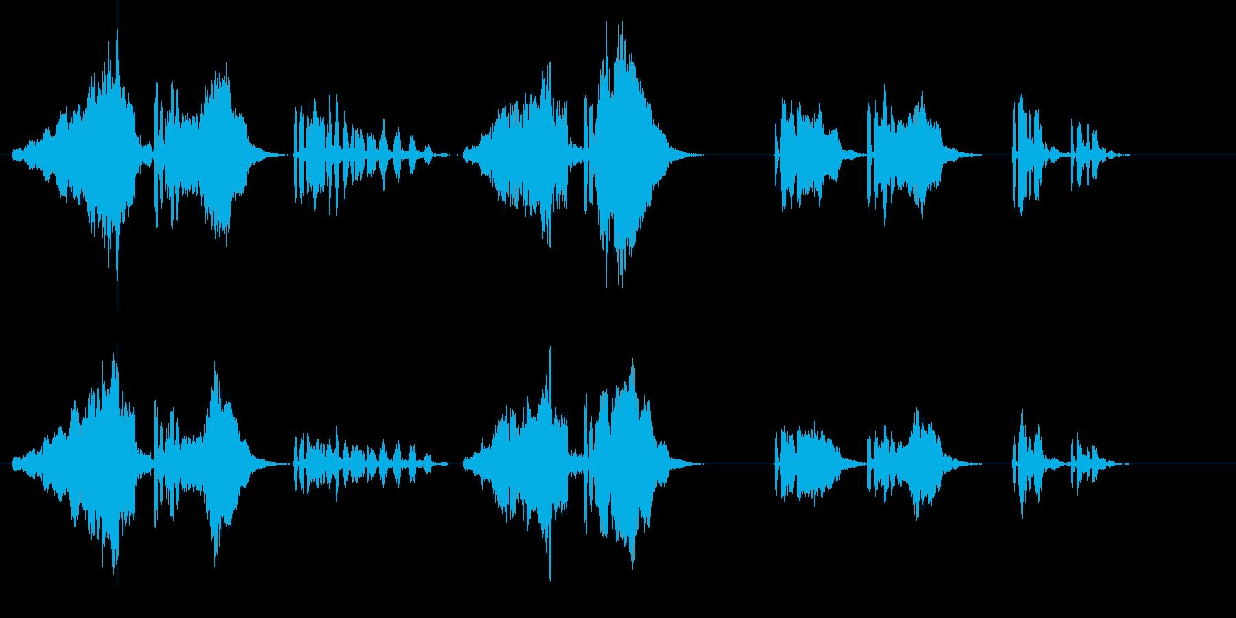 うぐいす3エコー長梅に鶯春鳴き声初音ホーの再生済みの波形