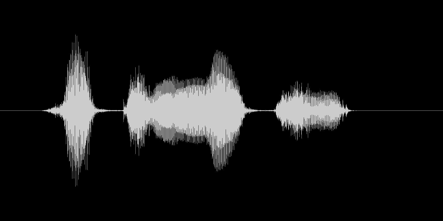 8月(8月・八月)の未再生の波形