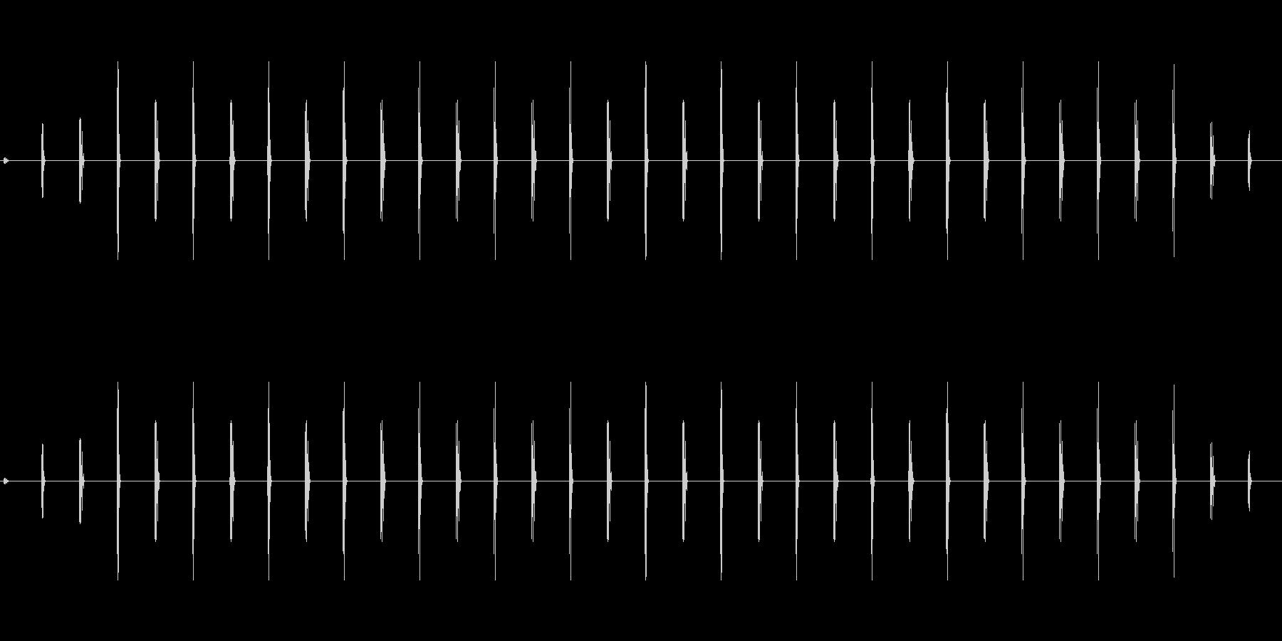 時計 ticktock_47-2_dryの未再生の波形