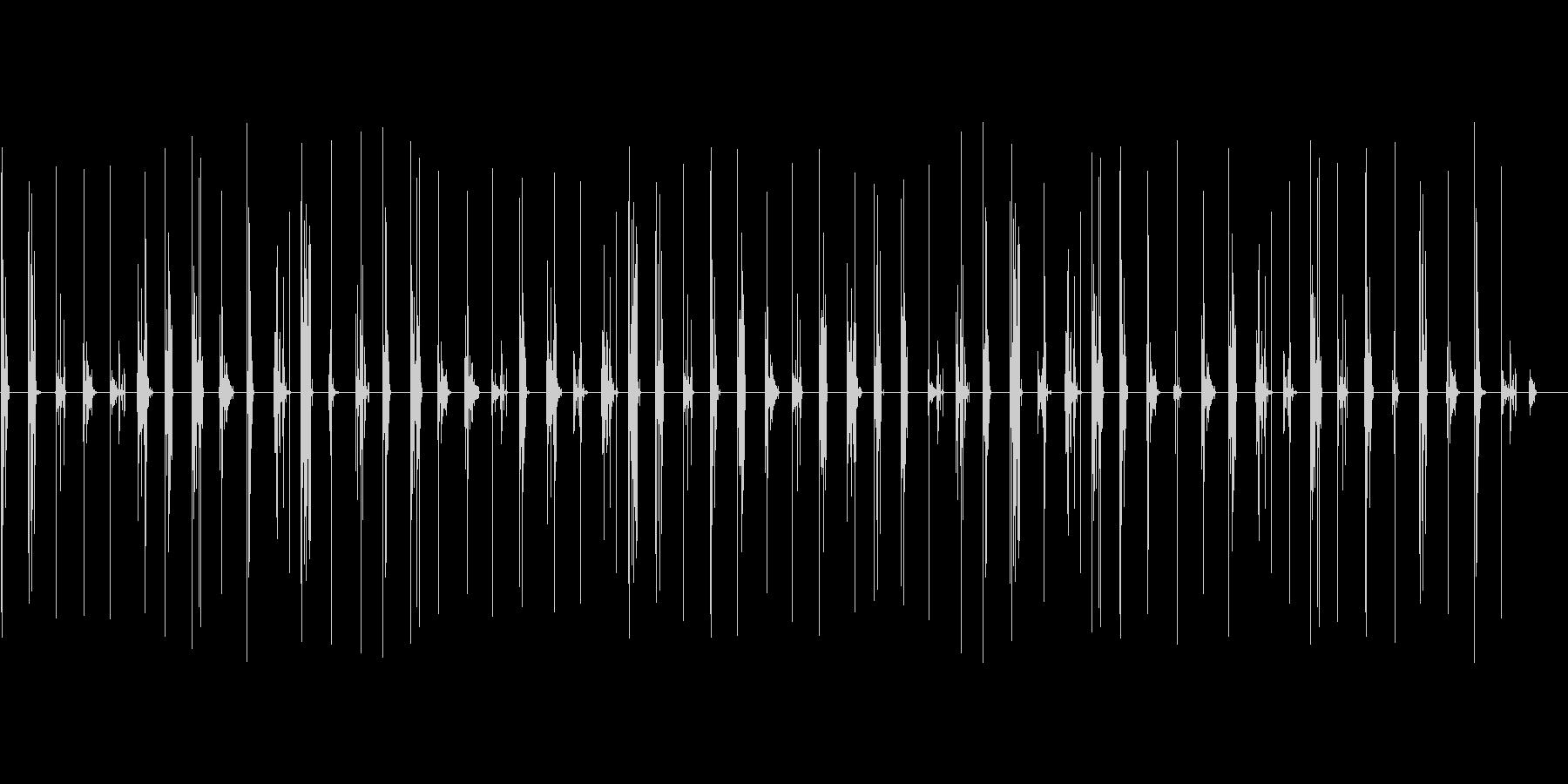 ブーツで森などをおそるおそる歩く音の未再生の波形