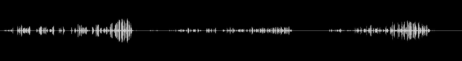 襟付きザンブル-ストレプトペリアデ...の未再生の波形