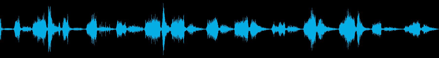 チャフスとスナール、キャットワイル...の再生済みの波形