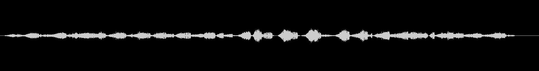 ムルシエラゴス-洞窟内の未再生の波形