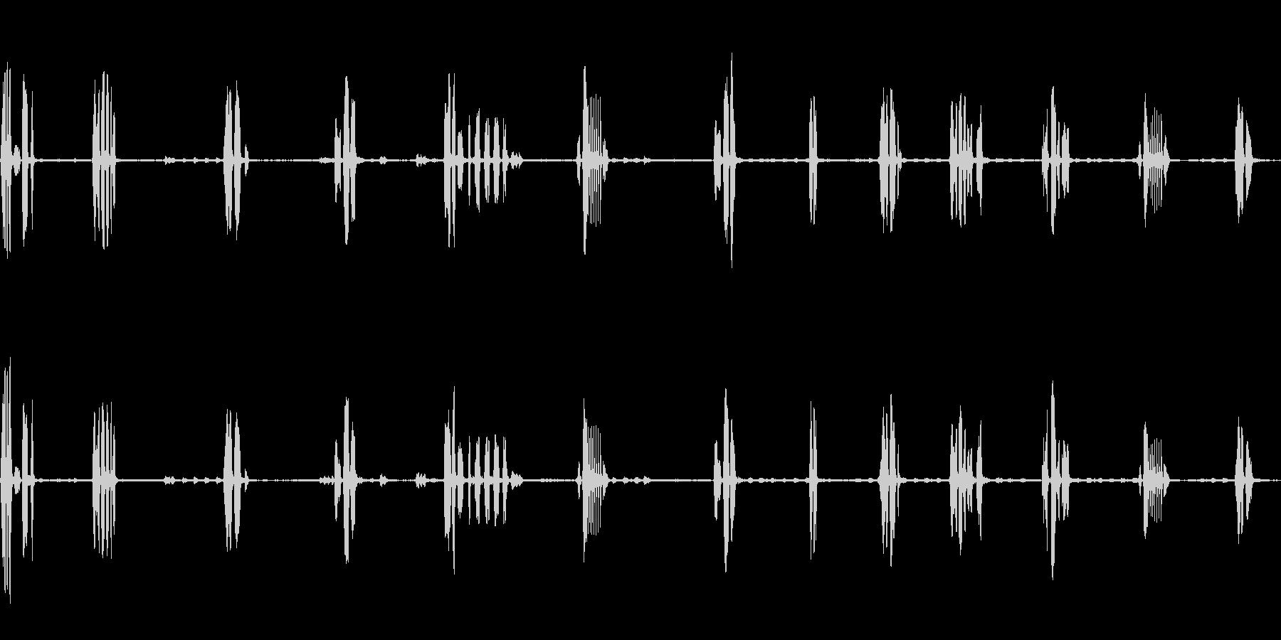 オオルリのさえずり(瑠璃色の小鳥)の未再生の波形