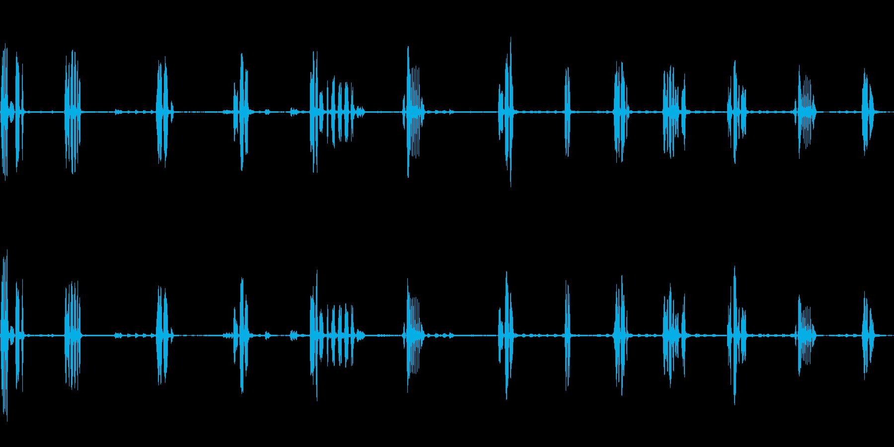 オオルリのさえずり(瑠璃色の小鳥)の再生済みの波形