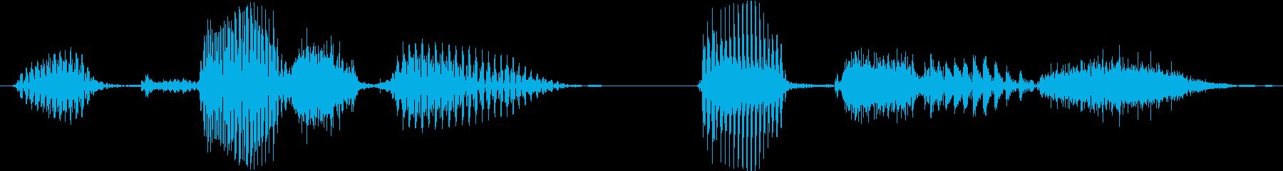 アクセスを要求するコンピューター応...の再生済みの波形