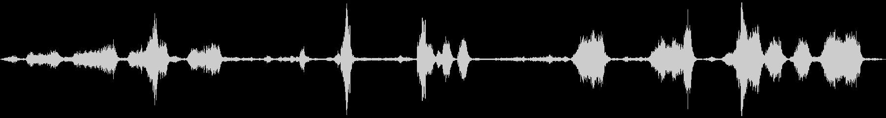 ペットショップの鳥の未再生の波形