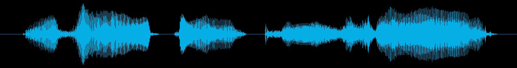 覚えておきましょうの再生済みの波形