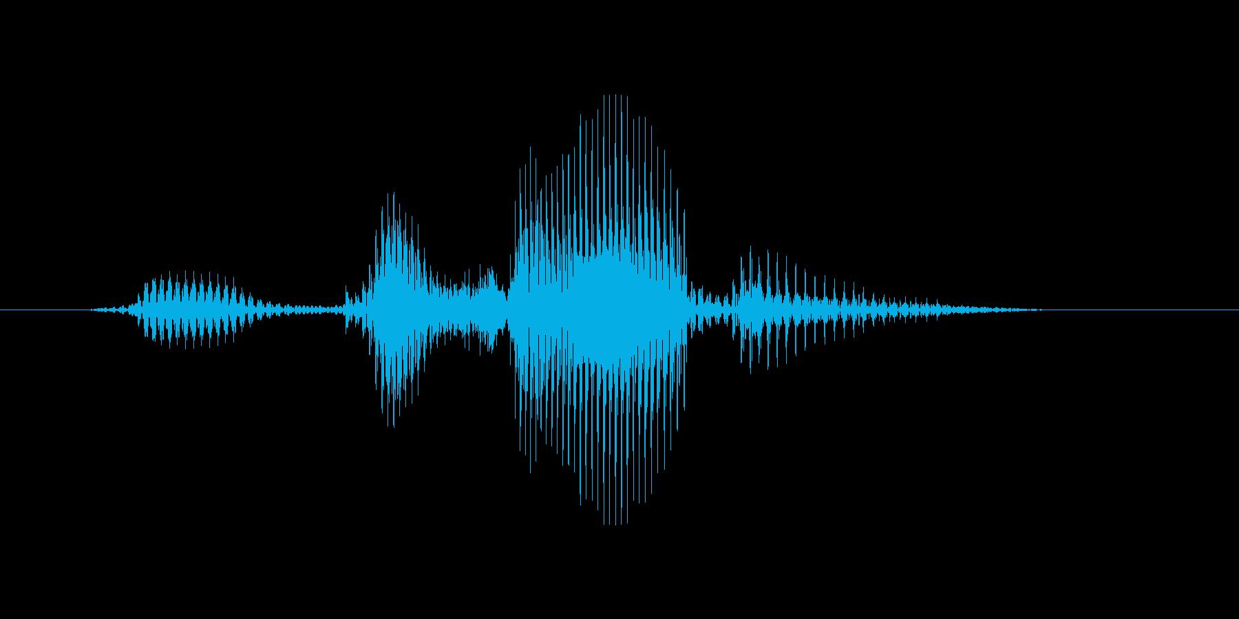 ビッグサーバーの再生済みの波形