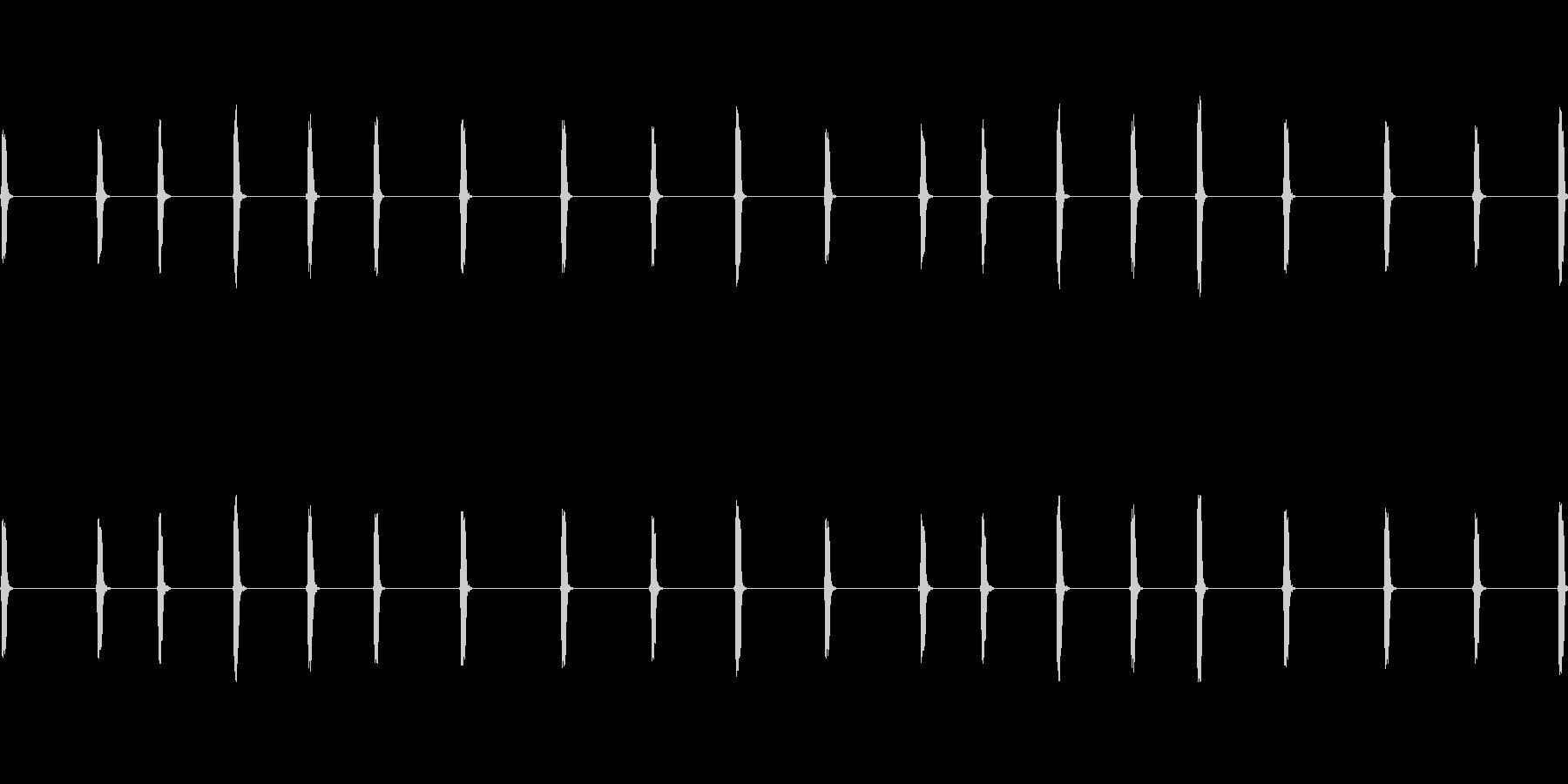 白いC冠したスズメ:鳴く、動物の鳥の未再生の波形
