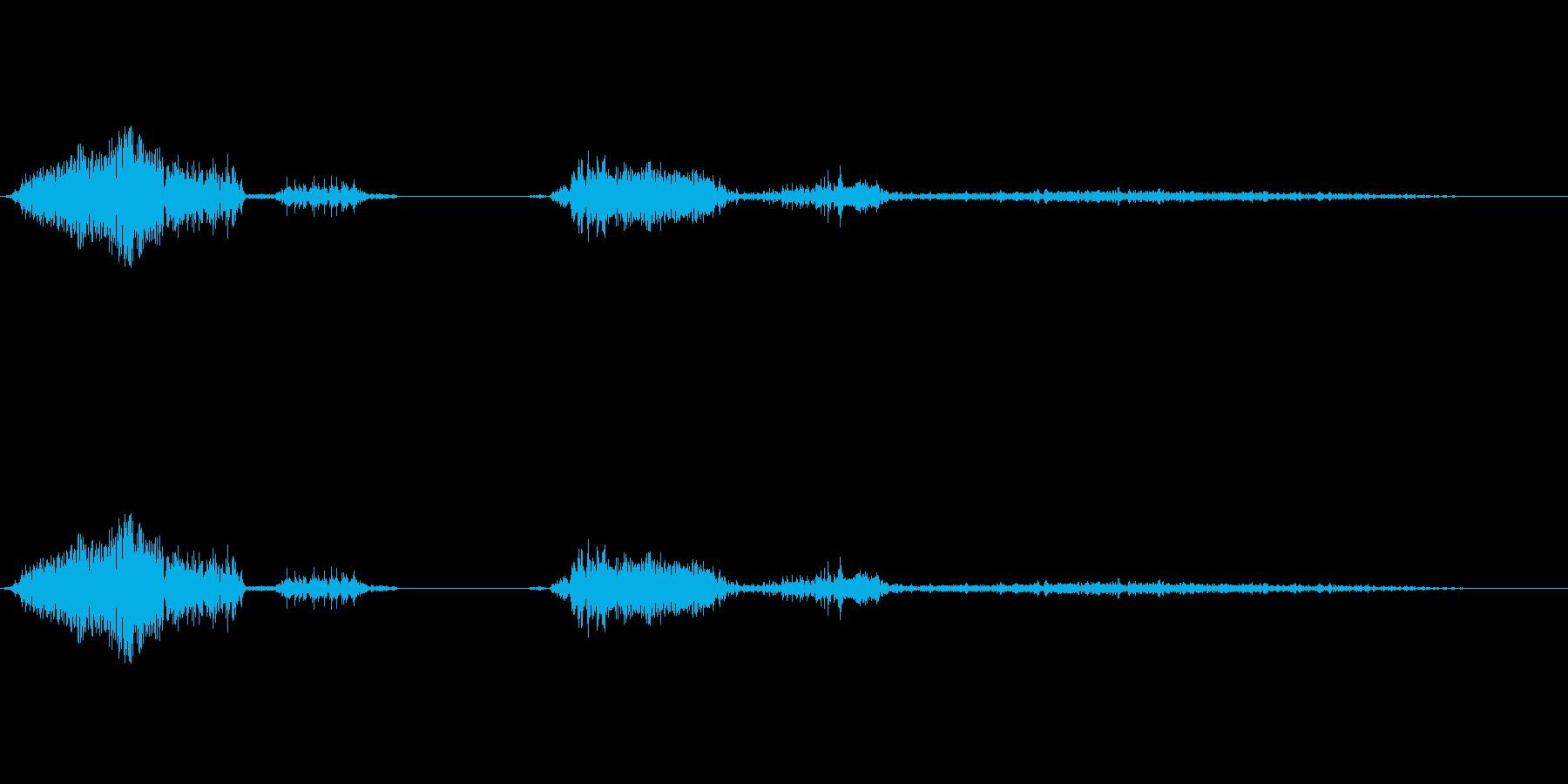 低声の成長その他の人間の声の再生済みの波形