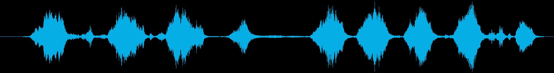 オカメインコの小グループ:絶え間な...の再生済みの波形