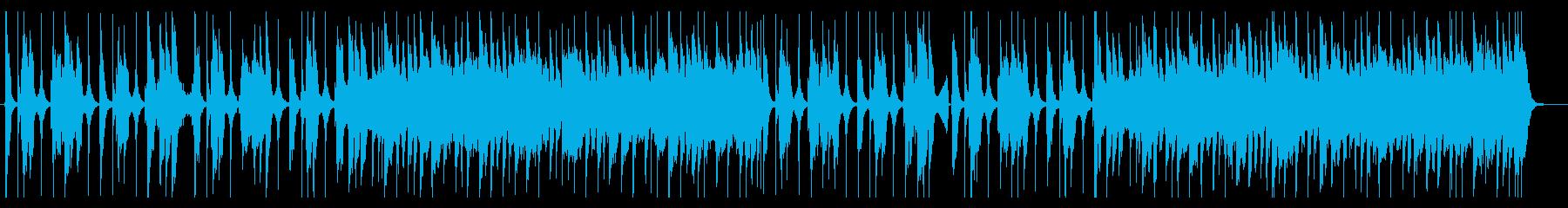 ブルース インディーロック ワイル...の再生済みの波形