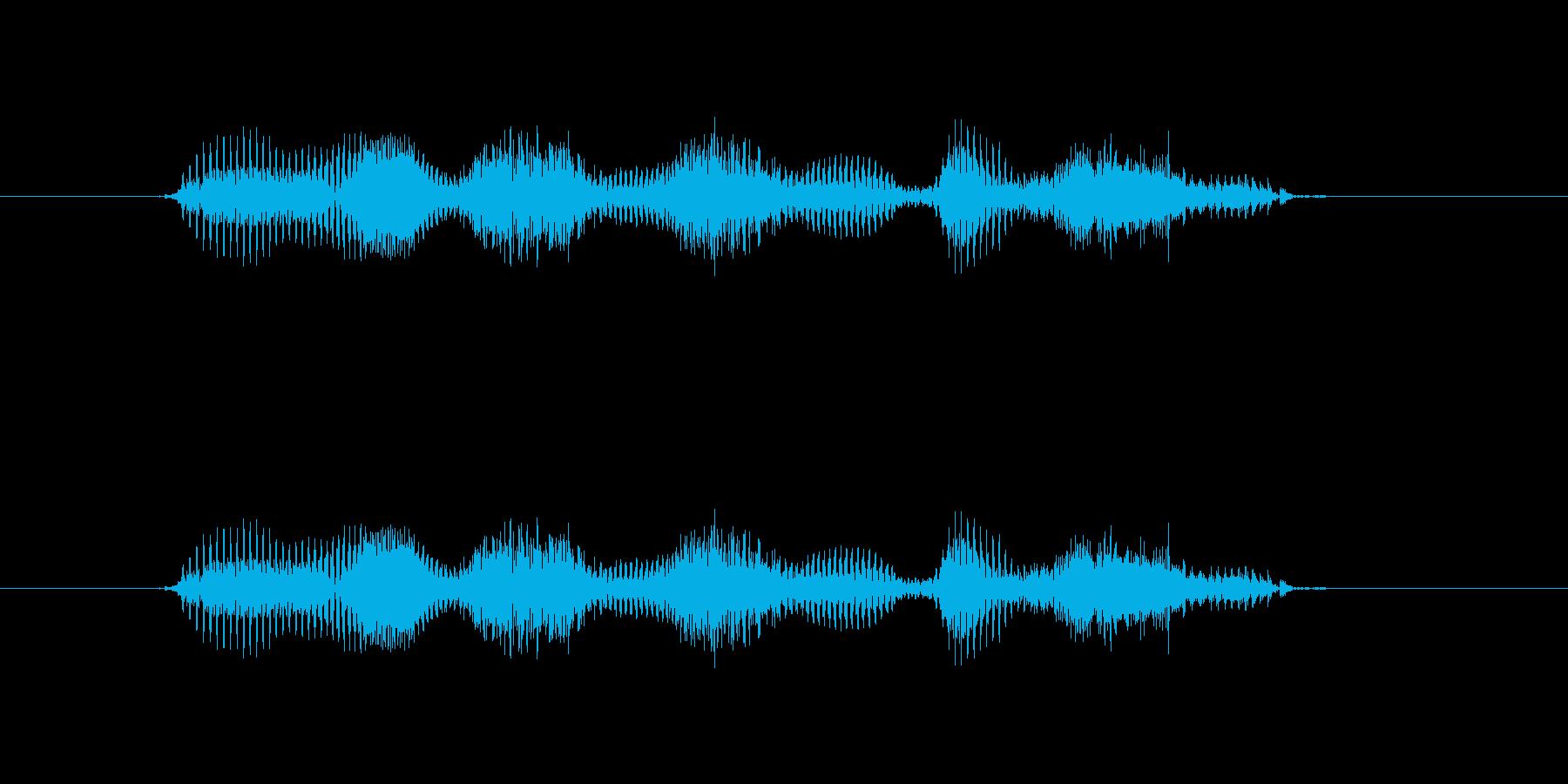 【干支】イノシシ年の再生済みの波形