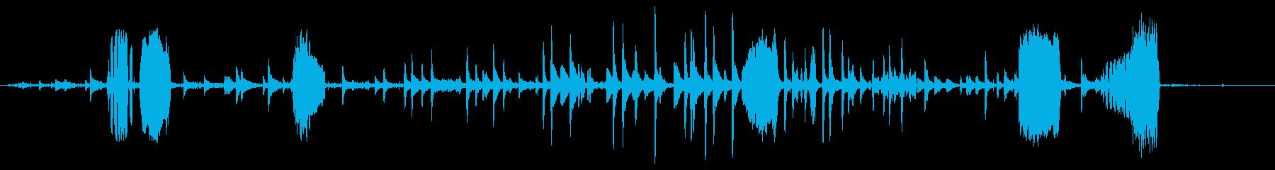 ヤギ、カウベルの群れの再生済みの波形