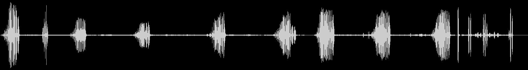 コモンフィンチ-ピンサコムの未再生の波形