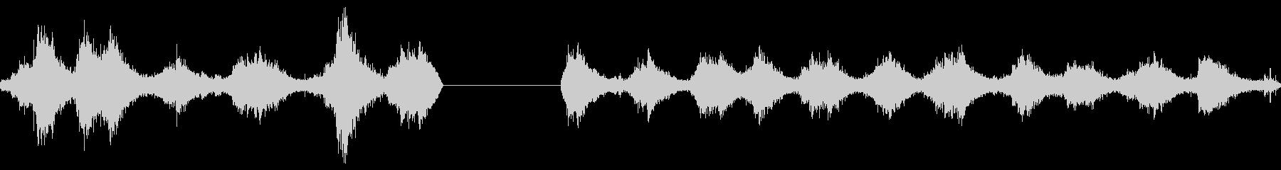 ブタフェメロインセンスバーナースイングの未再生の波形