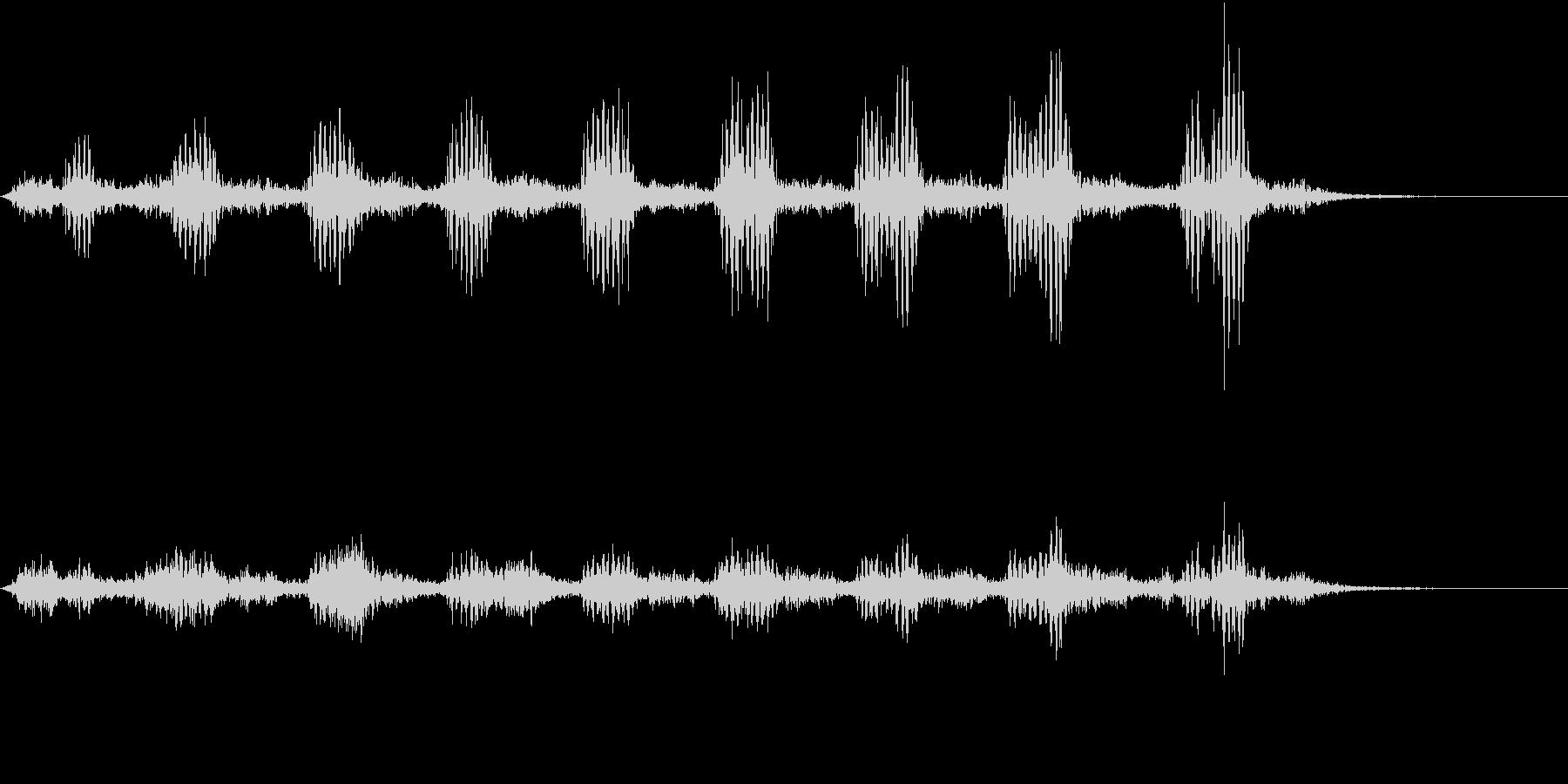 【生録音】フラミンゴの鳴き声 28の未再生の波形