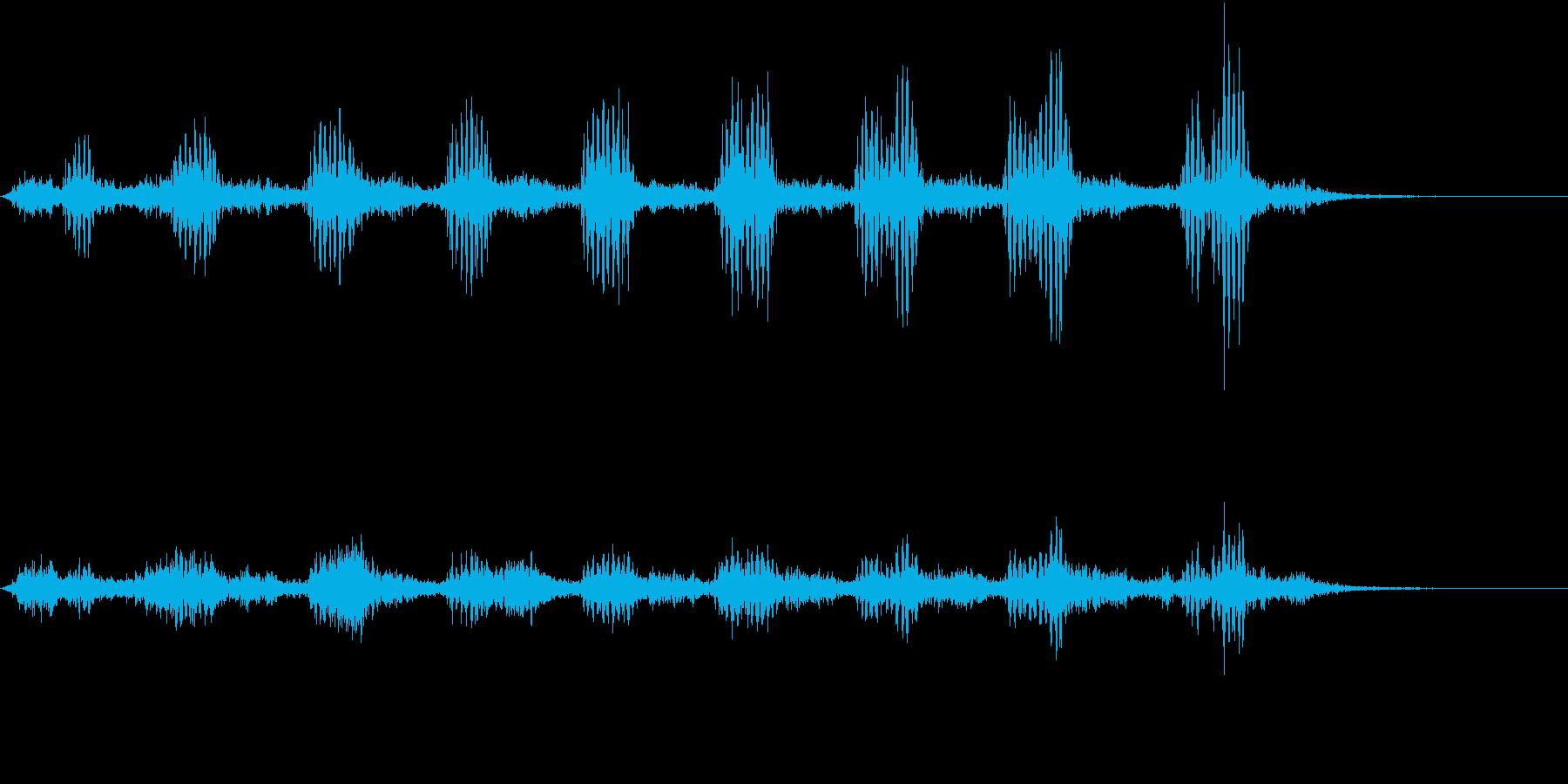 【生録音】フラミンゴの鳴き声 28の再生済みの波形