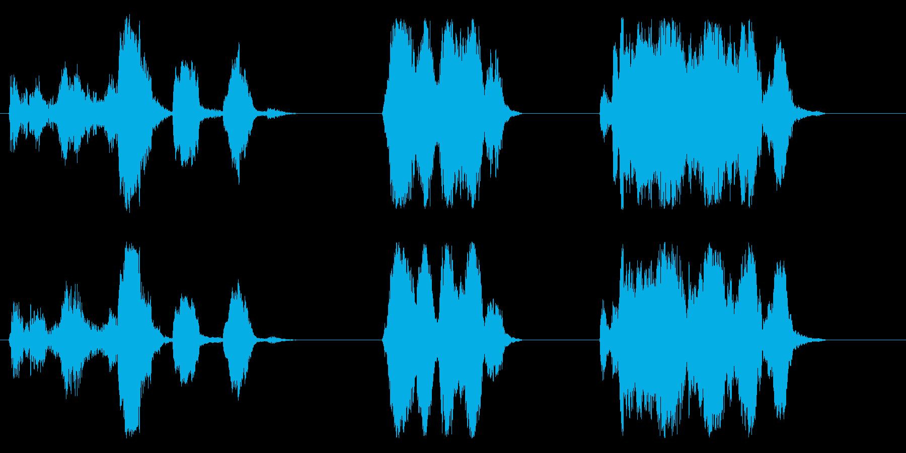 Peacocks Cry X 3;鳥の再生済みの波形