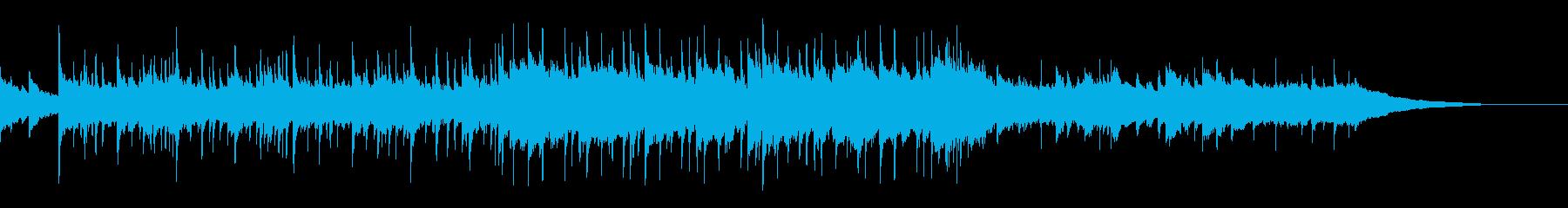 アコギとシタール、フォークBショートの再生済みの波形