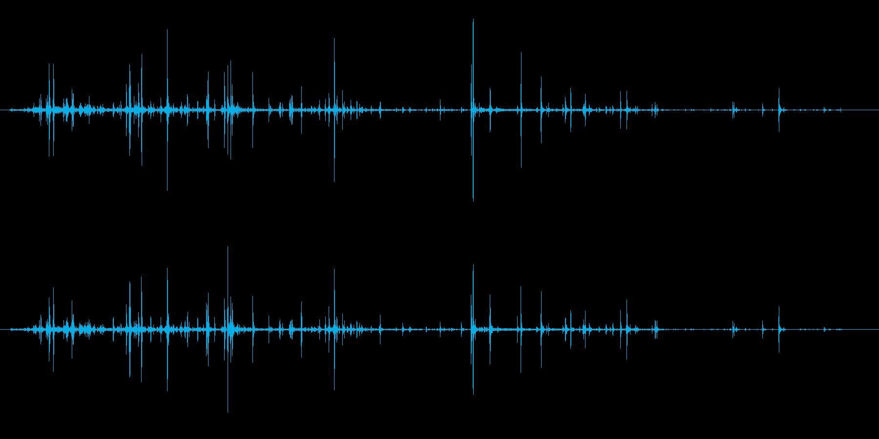 パインコーン:光処理クラックルの再生済みの波形