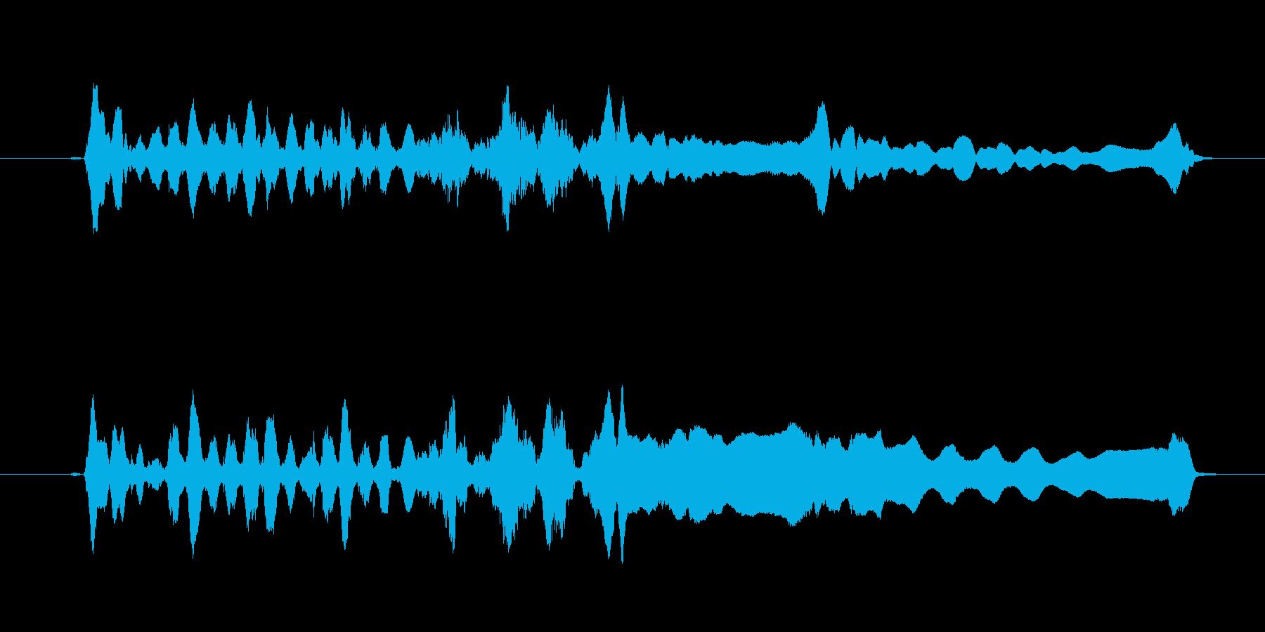 尺八によるジングルの再生済みの波形